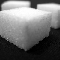 sugar free | 2010